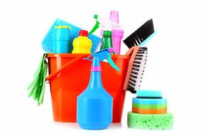 Cleaning Services, Carpet Cleaners