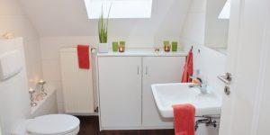 bathroom-1228427_1280-1.jpg-nggid015-ngg0dyn-700x350x100-00f0w010c011r110f110r010t010.jpg
